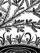 সিদ্ধার্থ হক-এর একগুচ্ছ কবিতা