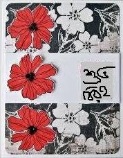 সেলিম রেজা নিউটনের তিনটি কবিতা