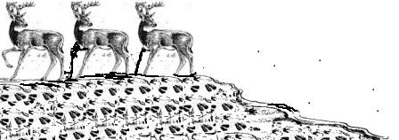 রুপালি ইউনিকর্ন