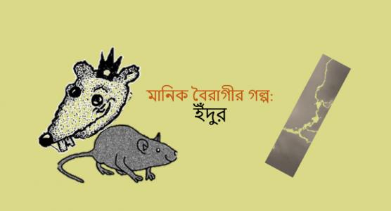 মানিক বৈরাগীর গল্প: ইঁদুর