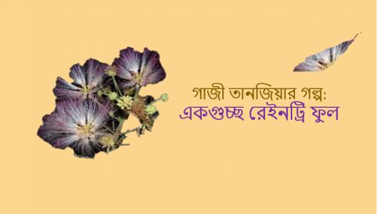 গাজী তানজিয়ার গল্প: একগুচ্ছ রেইনট্রি ফুল