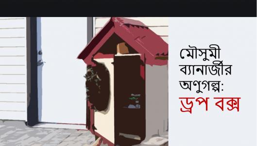মৌসুমী ব্যানার্জীর অণুগল্প: ড্রপ বক্স